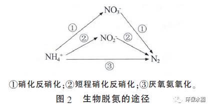 氨氮废水处理工艺
